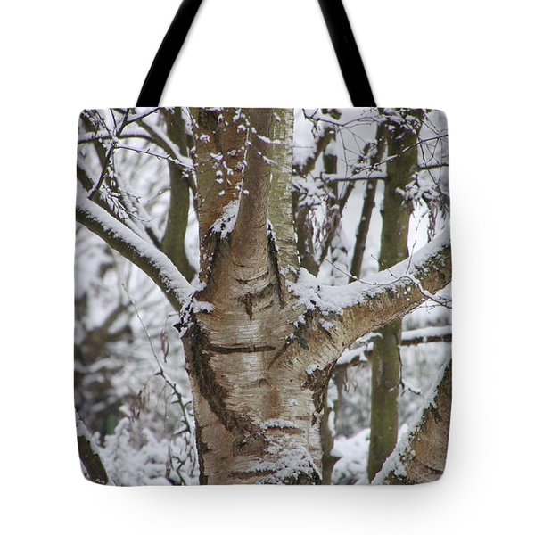 Tote Bag featuring the photograph Silver Birch by Elizabeth Lock