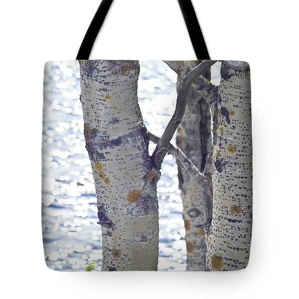 Silver Birch Trees At A Sunny Lake Tote Bag by Heiko Koehrer-Wagner