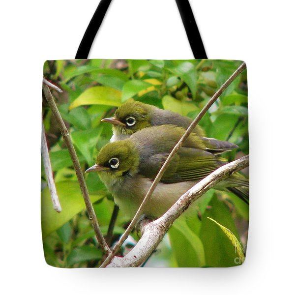 Silver Eyes In New Zealand Tote Bag by Michele Penner