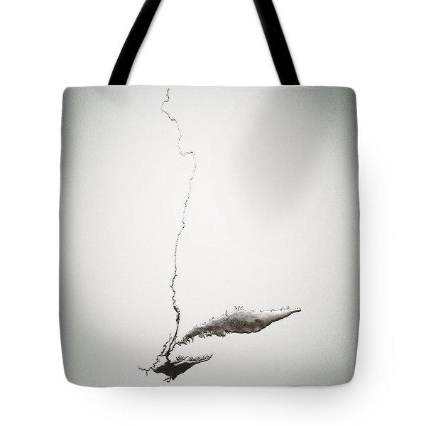 Silver Hudson By Maya Lin Tote Bag
