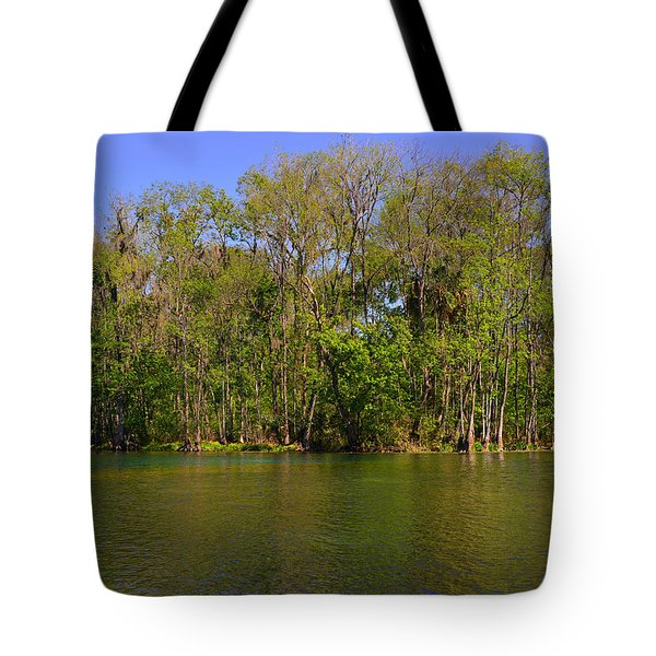 Silver Springs - Old-style Florida Tote Bag by Christine Till