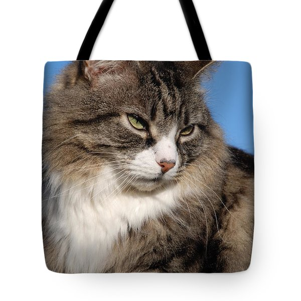 Silver Tabby Cat Tote Bag