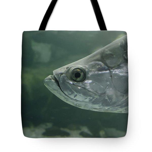 Silver Tarpon Tote Bag