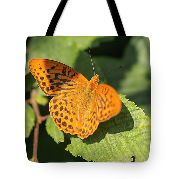 Tote Bag featuring the photograph Silver-washed Fritillary  - Male - Argynnis Paphia by Jivko Nakev
