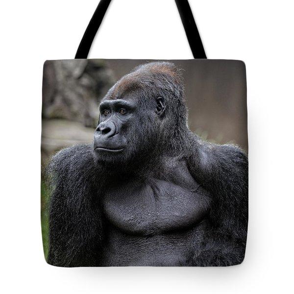 Silverback Gorilla Tote Bag by Scott Hill