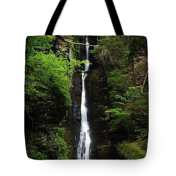 Tote Bag featuring the photograph Silverthread Falls by Debra Fedchin