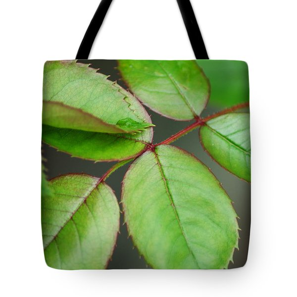 Simple Elegance Tote Bag by Frozen in Time Fine Art Photography