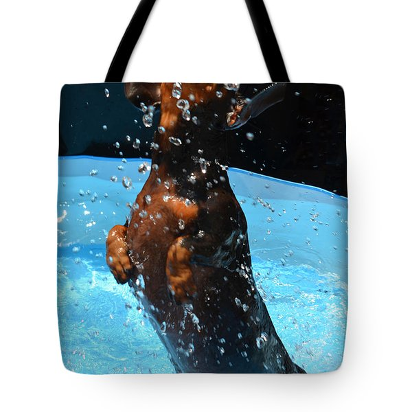Simple Pleasures Of Romeo The Water Dog Tote Bag