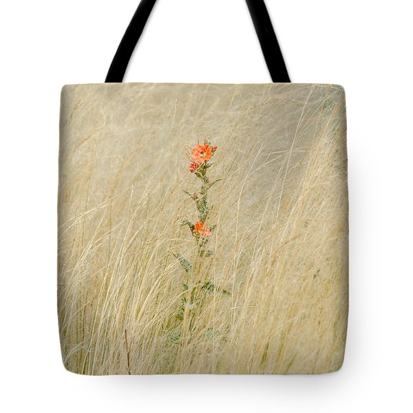 Simple Splash Of Color Tote Bag