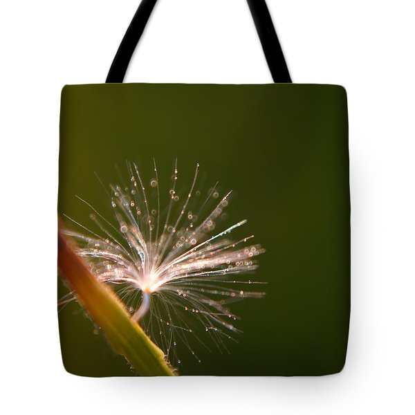 Simpliest Beauty Tote Bag