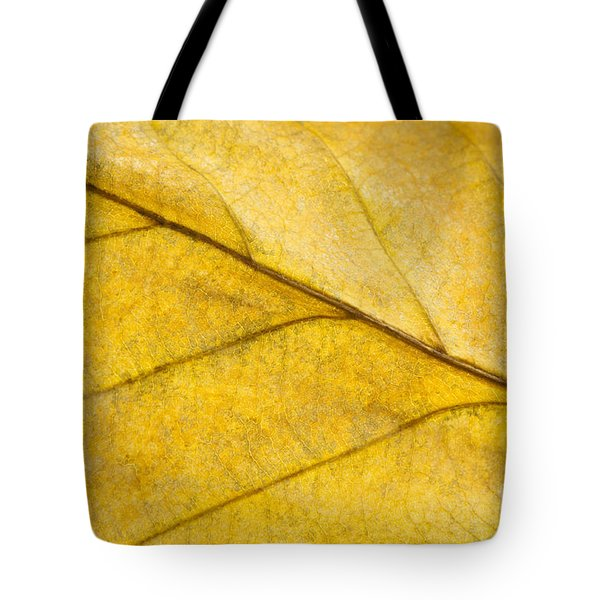 Simply Beech Tote Bag by Anne Gilbert
