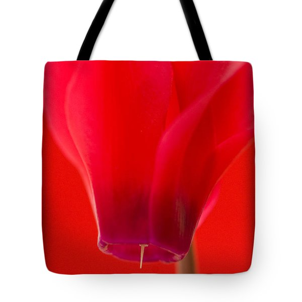Simply Red Tote Bag by Anne Gilbert