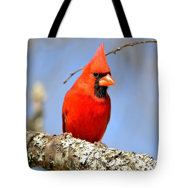 Tote Bag featuring the photograph Simply Red by Deena Stoddard