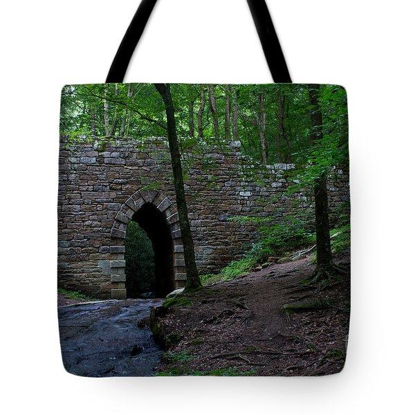 Since 1802 Poinsett Bridge Tote Bag