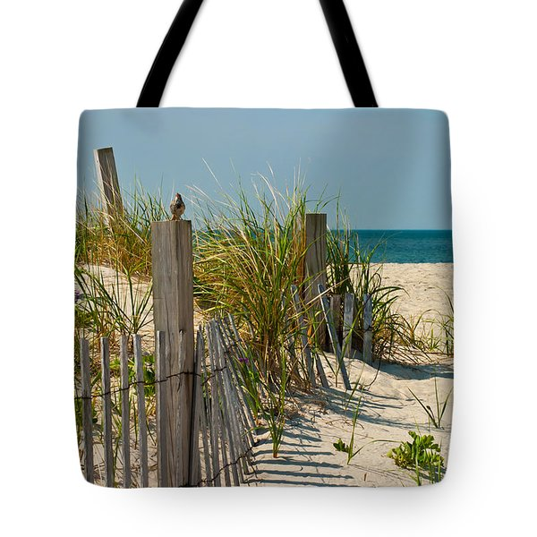 Singer At The Shore Tote Bag