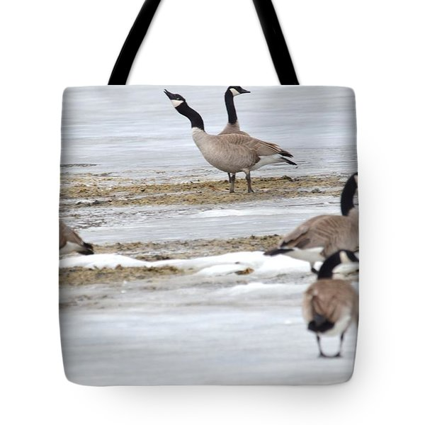 Tote Bag featuring the photograph Singing A Tune by Dacia Doroff
