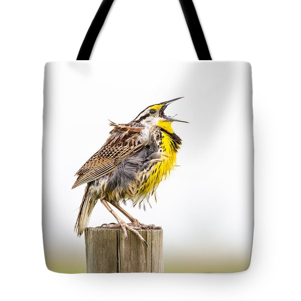 Singing Meadowlark 3rd Of 3 Tote Bag