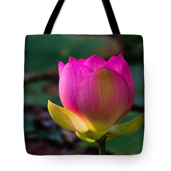 Single Blossum Tote Bag