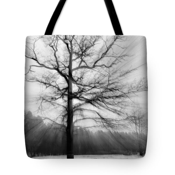 Single Leafless Tree In Winter Forest Tote Bag