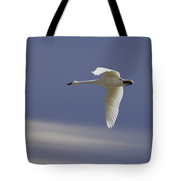 Single Swan In Flight Tote Bag