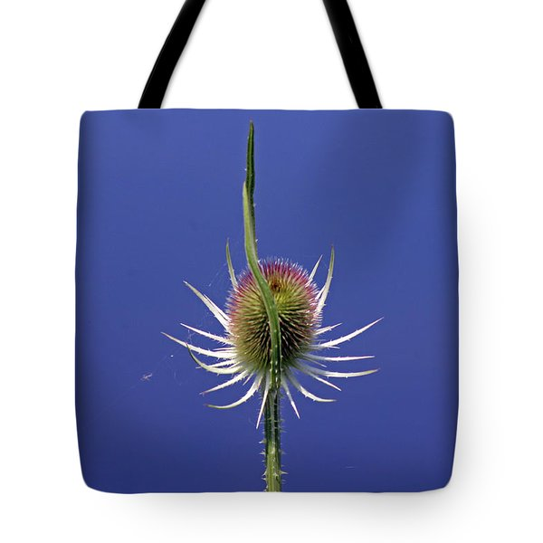 Single Teasel Tote Bag