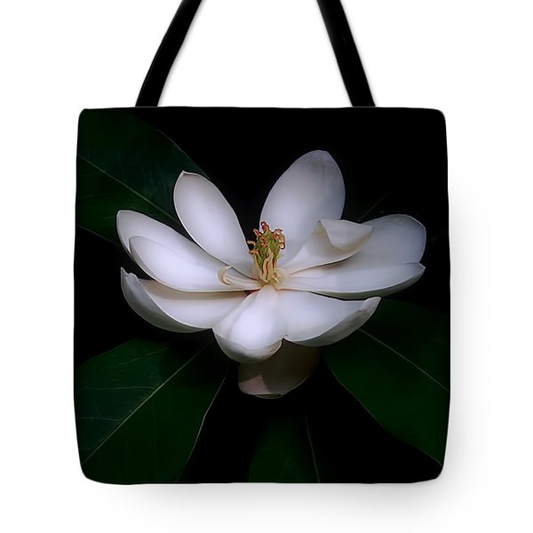 Sweet White Magnolia Bloom Tote Bag by Louise Kumpf