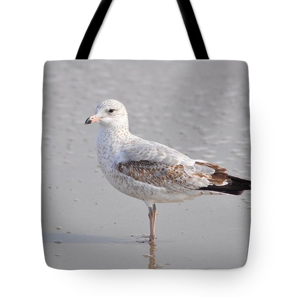 Sinking Sand Tote Bag