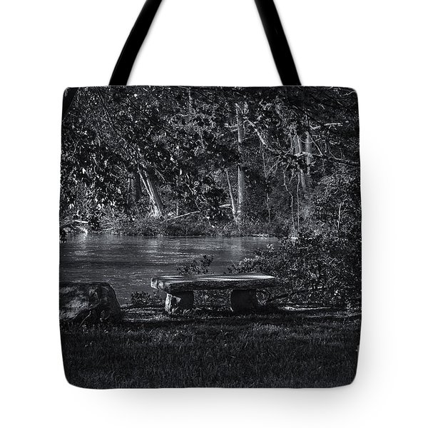 Tote Bag featuring the photograph Sit And Ponder by Mark Myhaver