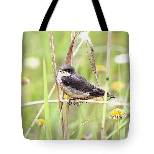 Tote Bag featuring the photograph Sitin' Pretty by Elizabeth Winter