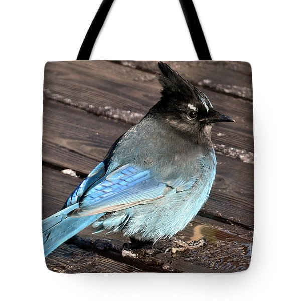 Tote Bag featuring the photograph Sittin' In The Sun by Dorrene BrownButterfield