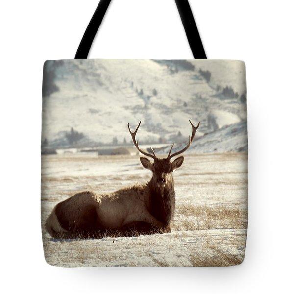 Sitting Bull Elk Tote Bag by Juli Scalzi