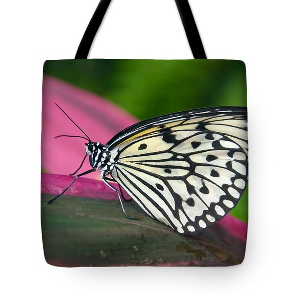 Tote Bag featuring the photograph Sitting Pretty by Barbara Manis