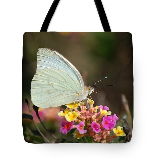 Sitting Pretty Tote Bag by Leticia Latocki