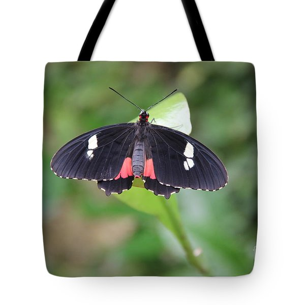 Sitting Still Tote Bag