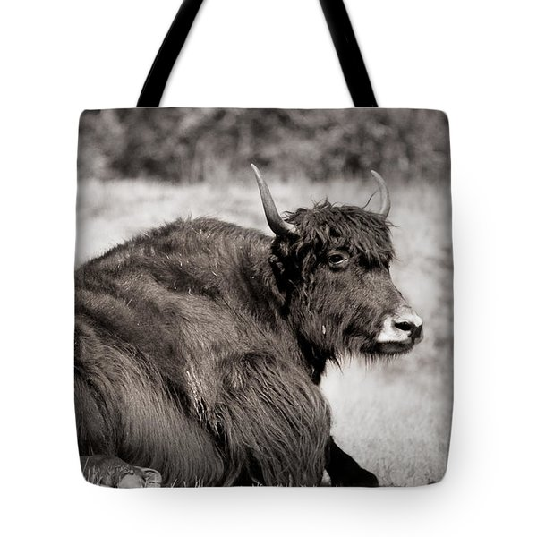 Sitting Strong Tote Bag by Melanie Lankford Photography
