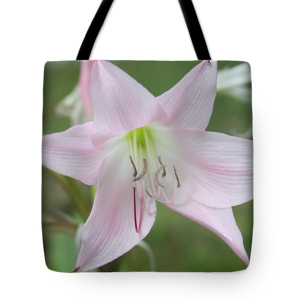 Six Point Flower Tote Bag