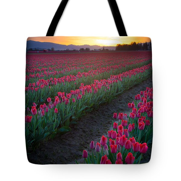 Skagit Valley Blazing Sunrise Tote Bag by Inge Johnsson