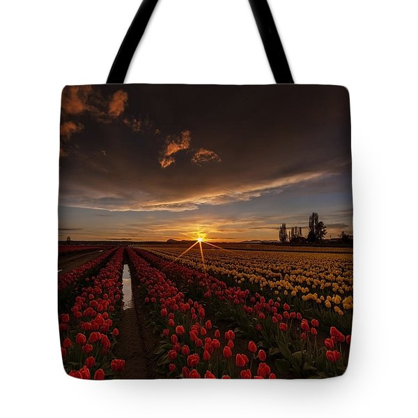 Skagit Valley Tulip Sunset Tote Bag