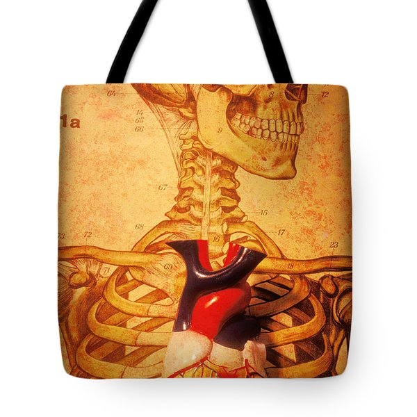 Skeleton And Heart Model Tote Bag by Garry Gay