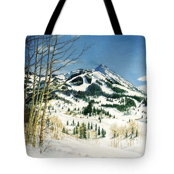 Skiers Paradise Tote Bag by Barbara Jewell