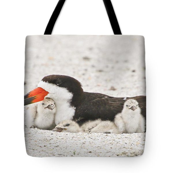 Skimmer Family Cuddle Tote Bag