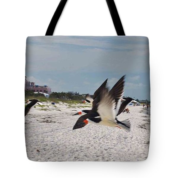 Black Skimmers At Don Cesar Tote Bag
