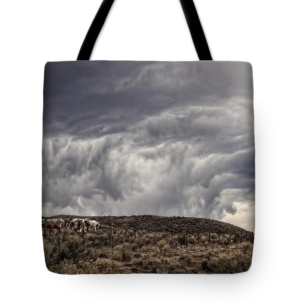 Skirting The Storm Tote Bag by Joan Davis