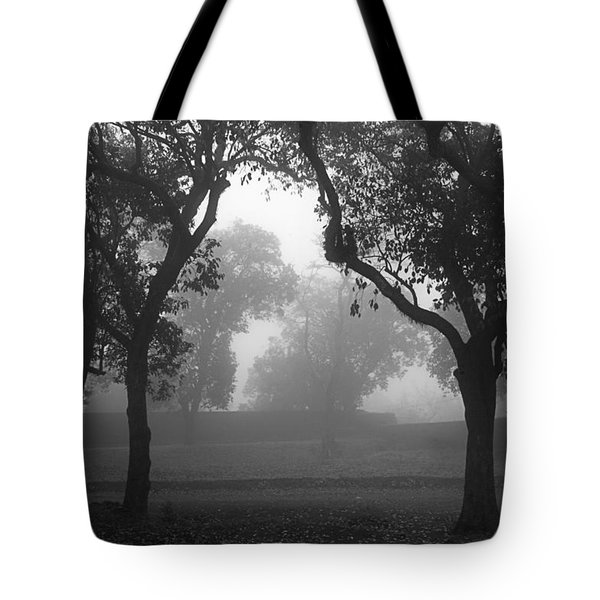 Tote Bag featuring the photograph Skc 0063 Atmospheric Bliss by Sunil Kapadia