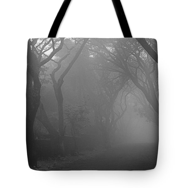 Tote Bag featuring the photograph Skc 0077 A Romatic Path by Sunil Kapadia