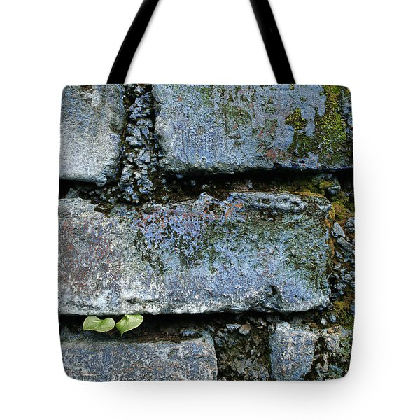 Tote Bag featuring the photograph Skc 0301 Tiny Twin Leaves by Sunil Kapadia