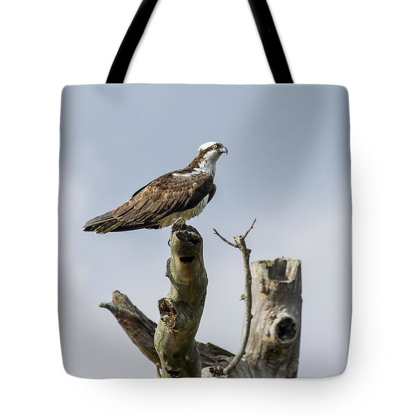 Tote Bag featuring the photograph Sky Hunter 2 by David Lester