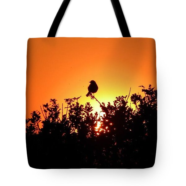 Sky Watcher Tote Bag