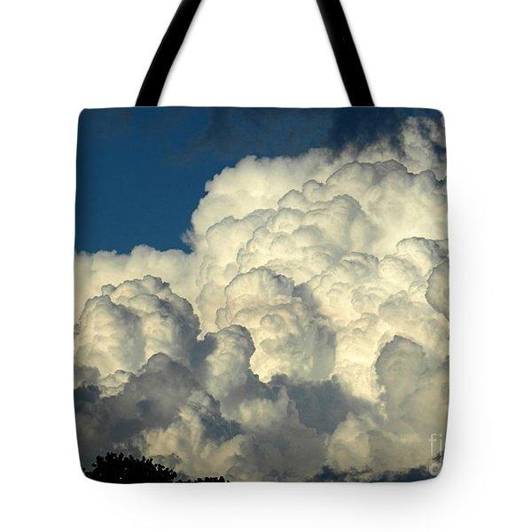 Skyward Sculpture Tote Bag