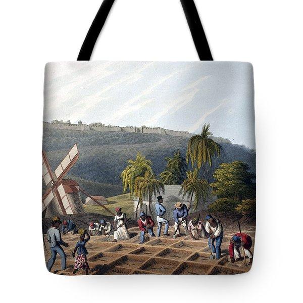 Slaves Planting Sugar Cane, 19th Century Tote Bag